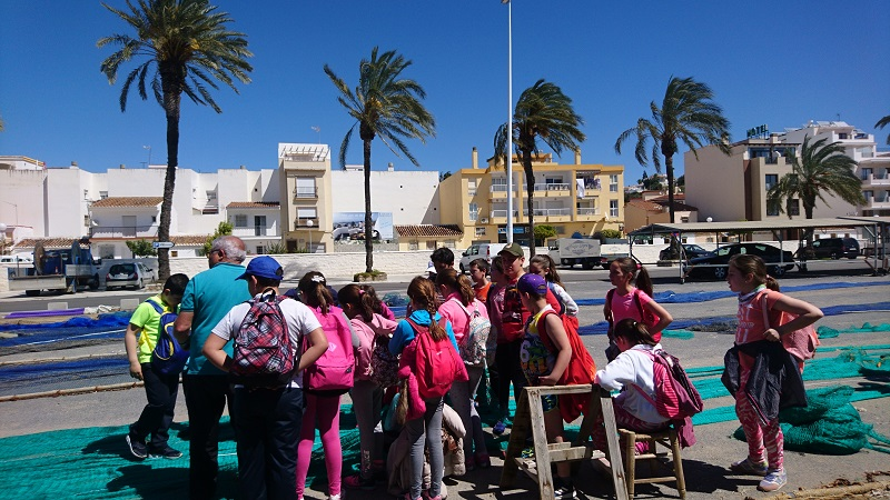 Excursions for schools on the Costa del Sol, Saylor Tourism