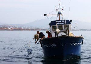 Barco de artes menores