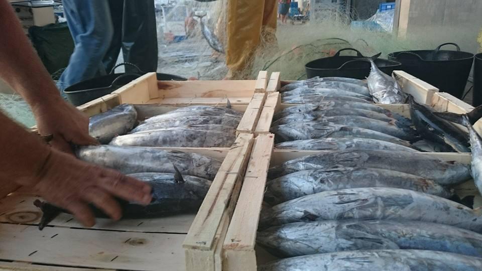 Beneficios de comer pescado fresco de la Lonja de Marbella